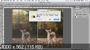Первый контраст в Adobe Photoshop (2017)