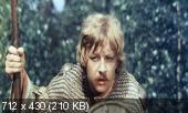 Финист - Ясный Сокол   (1975) DVDRip