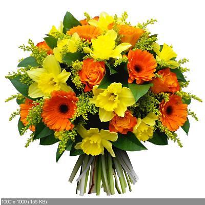 Поздравляем Наталью Ворон с Днем Рождения! - Страница 7 A92abe5a50811d4c1496c37b4ada0801