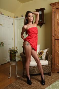 Anal fuck sexy women