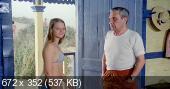 Пляжный домик / Casotto (1977)