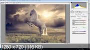 Драматический конь в Photoshop (2017)