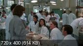 Большая медицина / Gross Anatomy (1989)