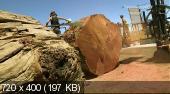 Короли столярного дела  / Redwood Kings (1-я серия) (2013) HDTVRip