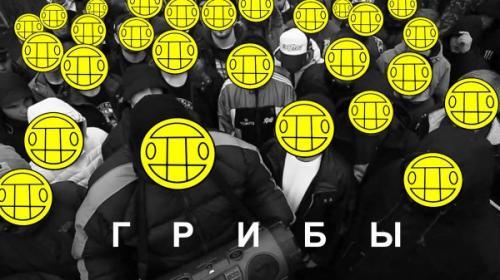 Петербуржец Айнур Ахметов перевел песню «Тает лед» группы «Грибы» на татарский язык
