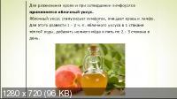 Чистая лимфа - отличный иммунитет! (2016) Вебинар. Скриншот №3
