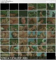 Danish Hard-Core Film No.531 - Road To Pleasure (1970/DVDRip)