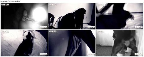 54b37ed4ddc3af7fc511ca5b598cc5a3 - Animal Sex Videos Free Download