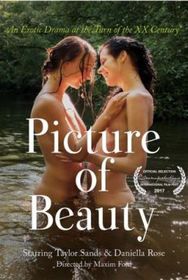 Картина красоты / Изображение красоты / Picture of Beauty (2017) BDRip 1080p