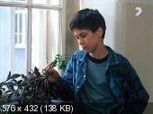 http//i91.fastpic.ru/thumb/2017/1025/cf/3cbb7d43c8e9ebb2f3eed5120835cf.jpeg