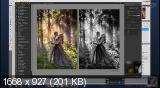 Индивидуальный МК Художественная ретушь фотографий (2017) [16,07 GB]