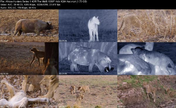Africas Hunters Series 1 4Of6 The Misfit 1080P Hdtv X264 Aac